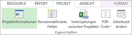 Schaltflächensymbol 'Projektinformationen'.