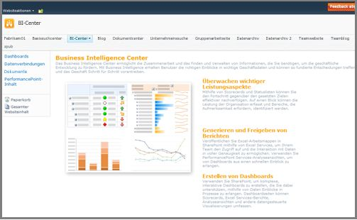 Das Business Intelligence Center ist für das Speichern von BI-Elementen optimiert