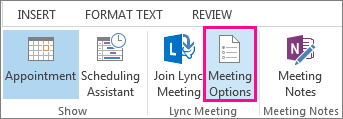 Screen shot of meeting options