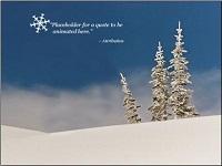 Custom animation effects: snow scene