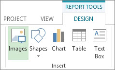 Report Tools Design tab