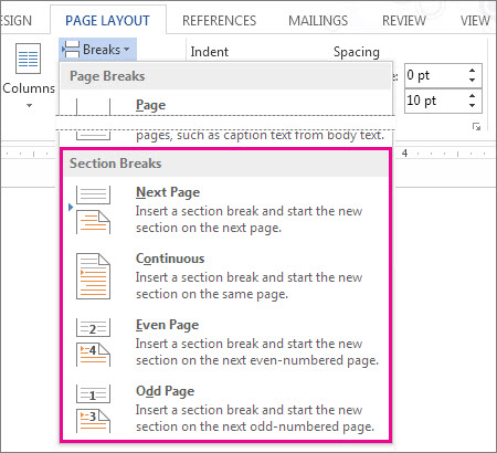 The different section breaks you can add to your Word document