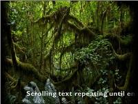 Custom animation effects: horizontal scrolling text