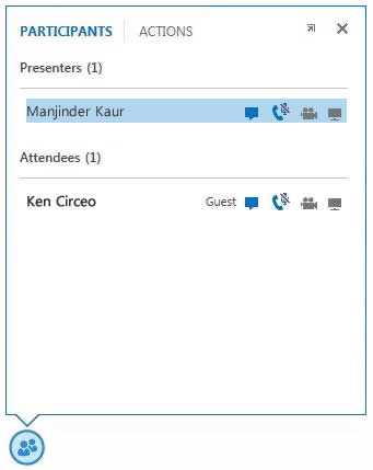 screen shot of the icons next to a participant's name to indicate the status of their IM, audio, video and sharing capabilities