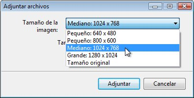Opciones de cambio de tamaño de datos adjuntos de imágenes