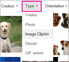 Menu Type avec l'option Image clipart sélectionnée