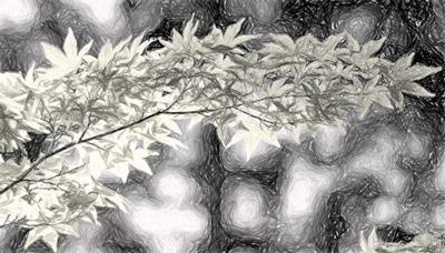 회색조 효과를 적용한 그림
