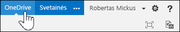 """Pasirinkite savo """"OneDrive"""" verslui biblioteką"""