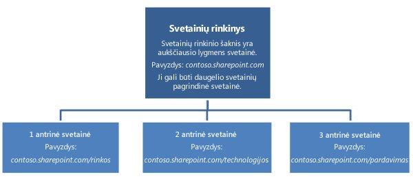 Svetainių rinkinio hierarchijos diagrama, kurioje rodoma aukščiausio lygio svetainė ir antrinės svetainės.