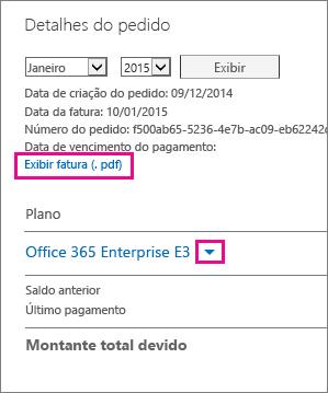 """Selecione """"Exibir fatura (.pdf)"""" para baixar um PDF da sua conta."""