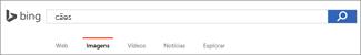 Consulta inserida na Caixa de Pesquisa de Imagens do Bing