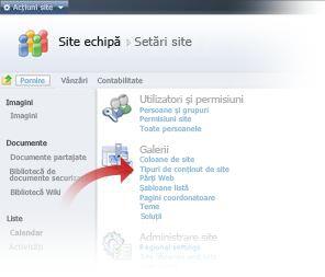 Selectarea tipurilor de conținut de site din fereastra Setări site
