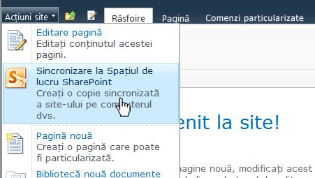 Selectați această opțiune pentru a sincroniza un site SharePoint pe computer