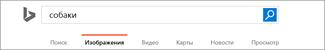 Запрос, введенный в поле поиска службы изображений Bing