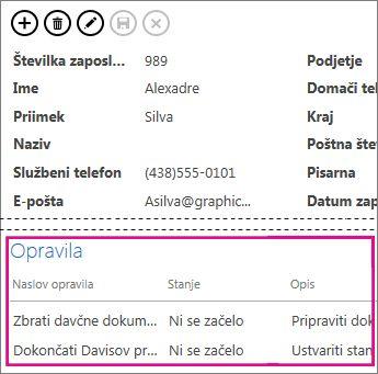 Pogled v spletnem programu Access z opravili, ki so prikazana v kontrolniku sorodnih elementov.