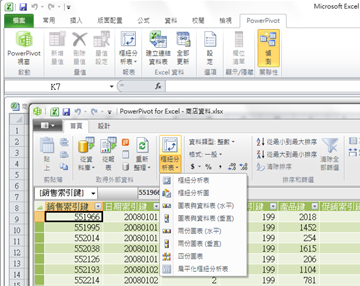 在 Excel 2010 中開啟的 [PowerPivot for Excel] 視窗