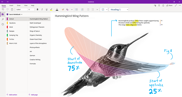 What 39 s the difference between onenote and onenote 2016 onenote - Open office windows 8 01 net ...