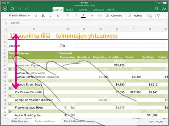 Excel Opas